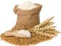 Разработен от 1997 г. бизнес в областта на зърнопреработването